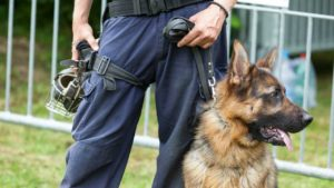 A policeman with a drug-sniffing dog.