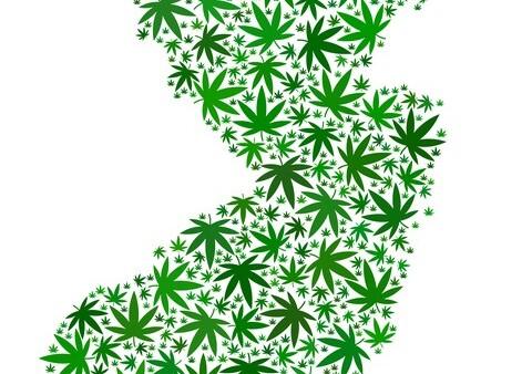 Decriminalization & Legalization of Marijuana in New Jersey – Status Update